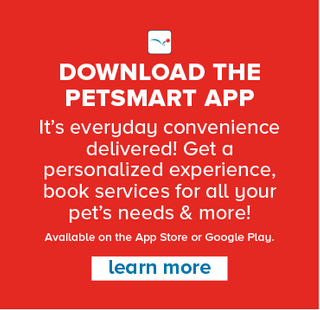 PetSmart - deals are valid from 08/03/20 to 08/30/20 - page 87.