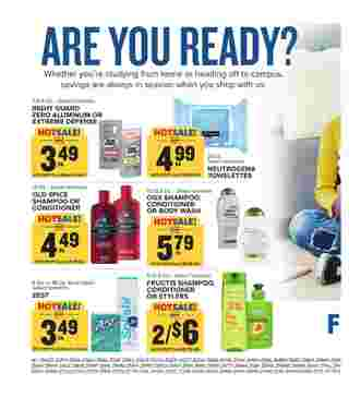 Food Lion - deals are valid from 08/12/20 to 08/18/20 - page 13.