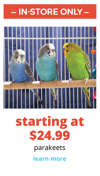 PetSmart - deals are valid from 08/03/20 to 08/30/20 - page 77.