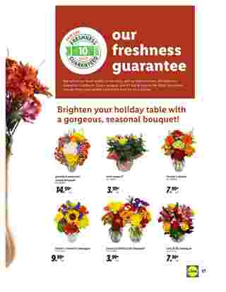 Lidl - deals are valid from 10/28/20 to 11/27/20 - page 17.