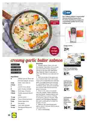 Lidl - deals are valid from 10/28/20 to 11/27/20 - page 28.