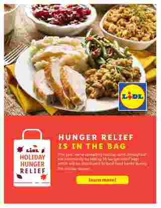 Lidl - deals are valid from 10/28/20 to 11/27/20 - page 64.