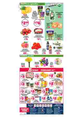 Family Fare - promo starting from 02/16/20 to 02/22/20 - page 8.