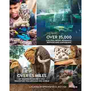 Bass Pro Shops - deals are valid from 01/01/20 to 01/01/21 - page 291.