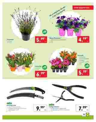 Lidl - promo starting from 04/24/19 to 04/30/19 - page 25.