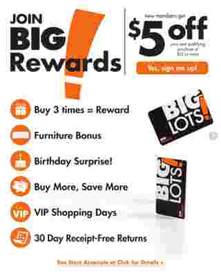 Big Lots - deals are valid from 01/19/20 to 07/31/20 - page 37.