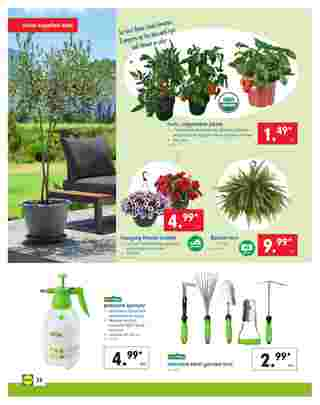 Lidl - deals are valid from 04/24/19 to 04/30/19 - page 24.